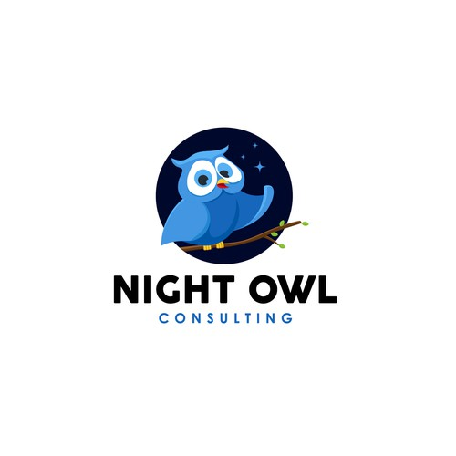 Night Owl Consulting