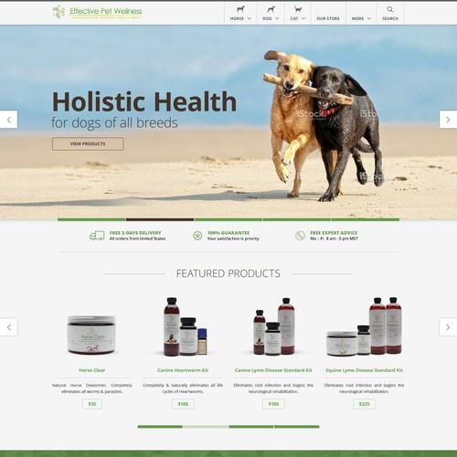 Website's redesign