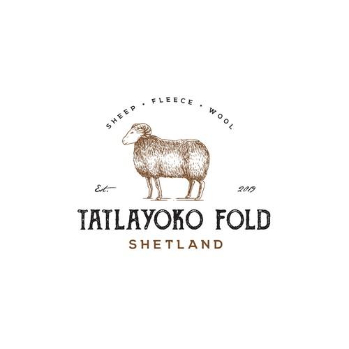Tatlayoko Fold Shetland