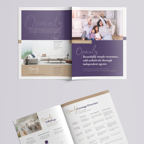 Marketing brochure for premium insurance company