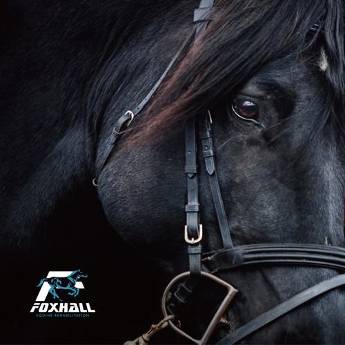 Foxhall Equine Rehabilitation