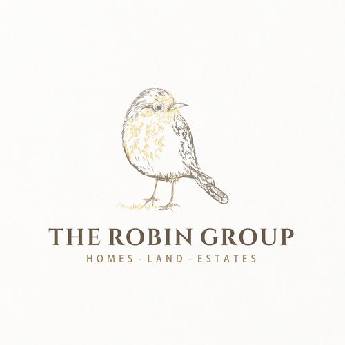 the robin bird logo design