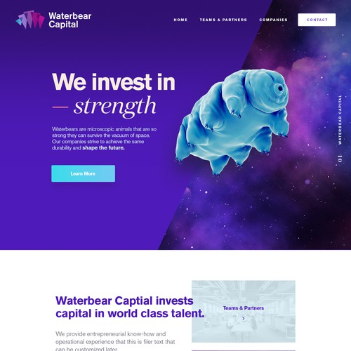 Clean & bold design for investment firm