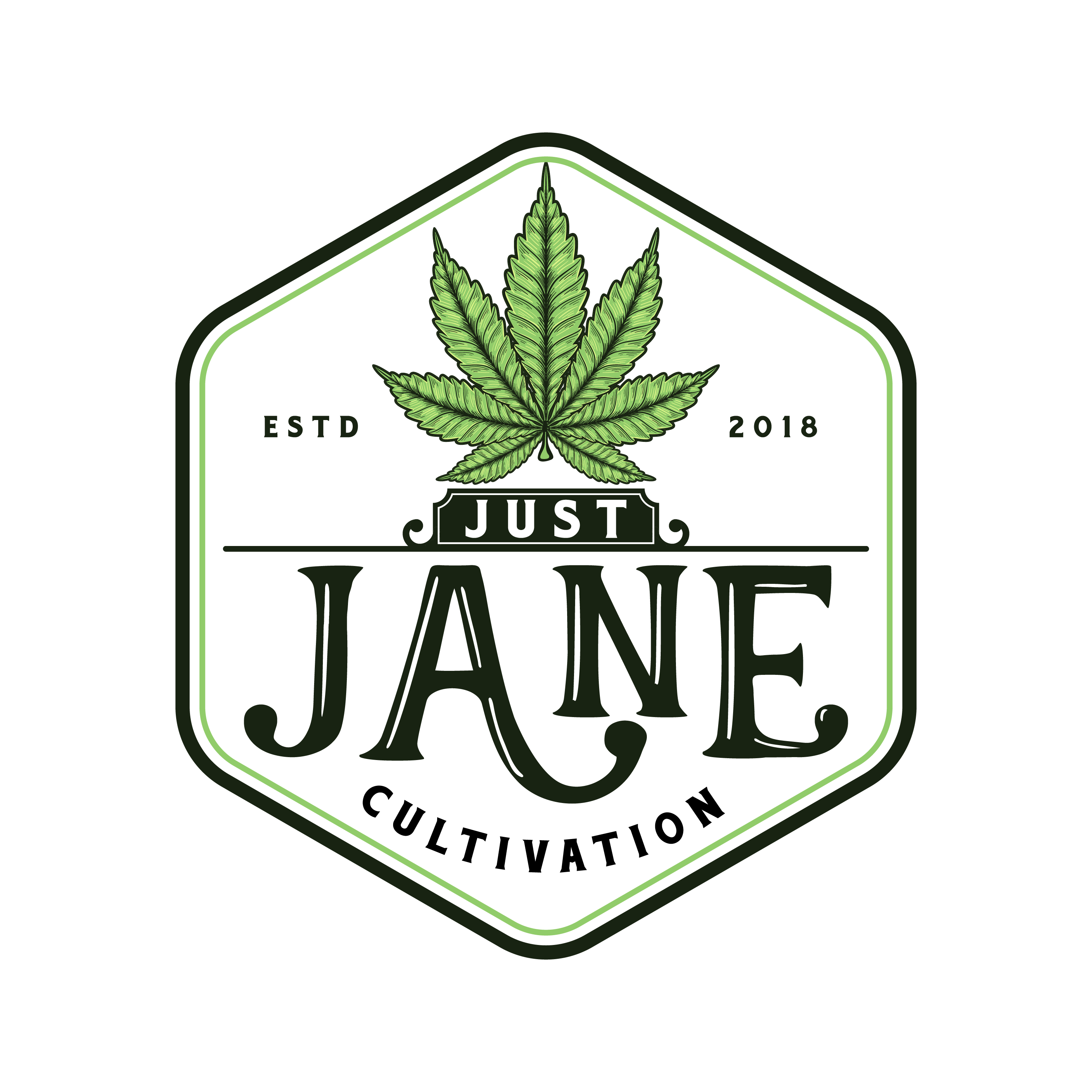 Just Jane Logo Design