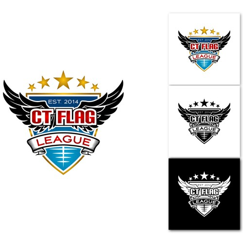 The CT FLAG LEAGUE Logo Contest
