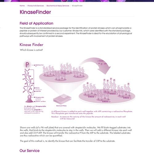 Kinase Finder Illustration Sample