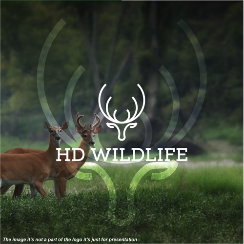 HD Wildlife