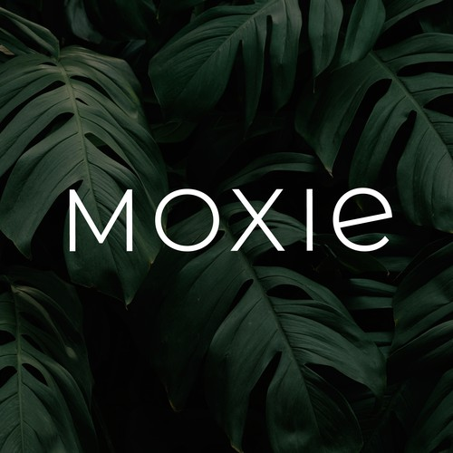 Strong estetic logo for Moxie
