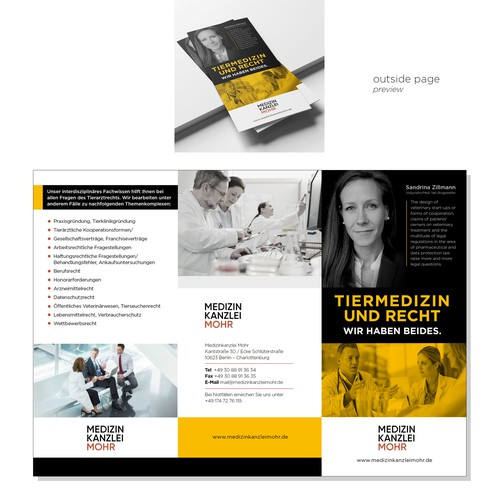 Brochure for Health Lawyer Consultant