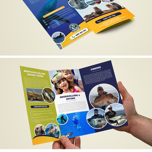 Create a new Tour brochure for Narooma Tours & Charter Fish Narooma