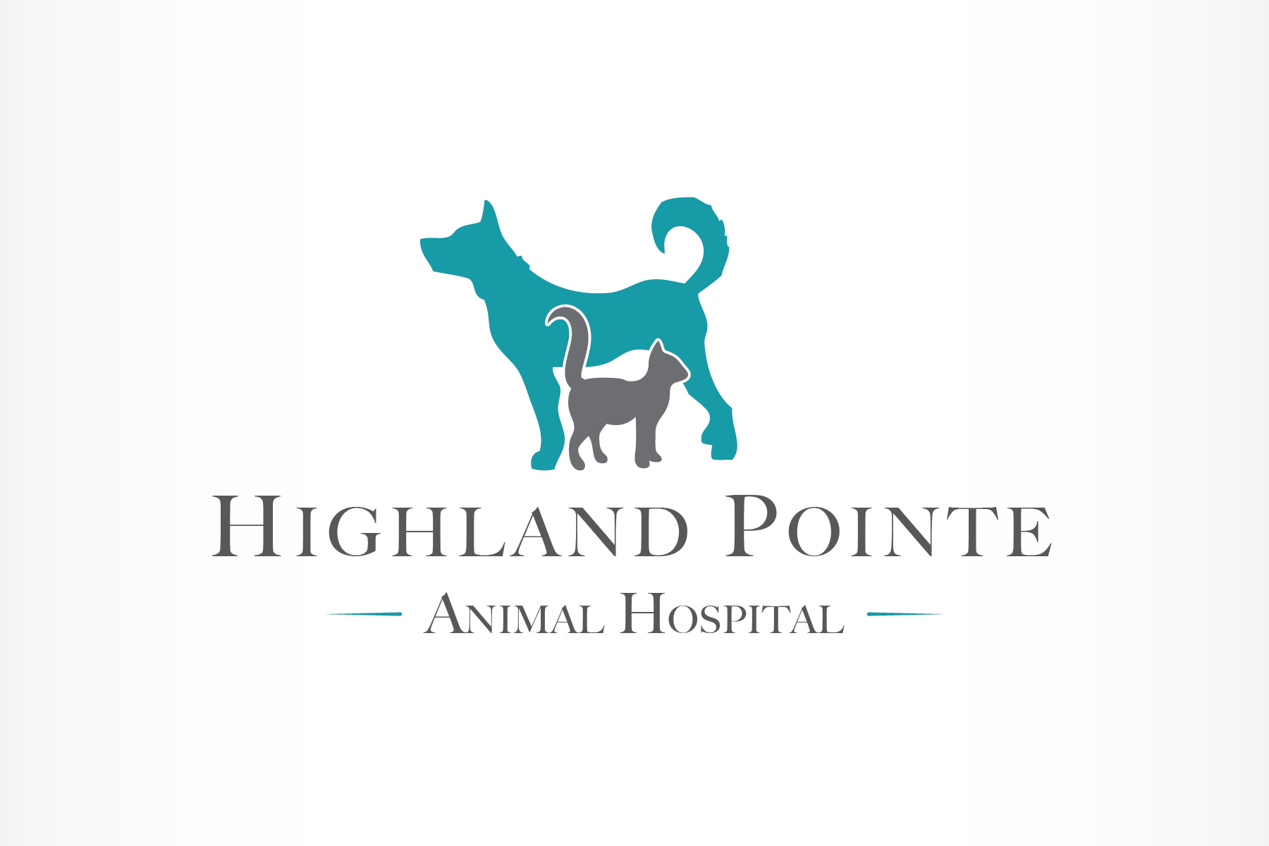 Create a sophisticated logo and website for a veterinary hospital.