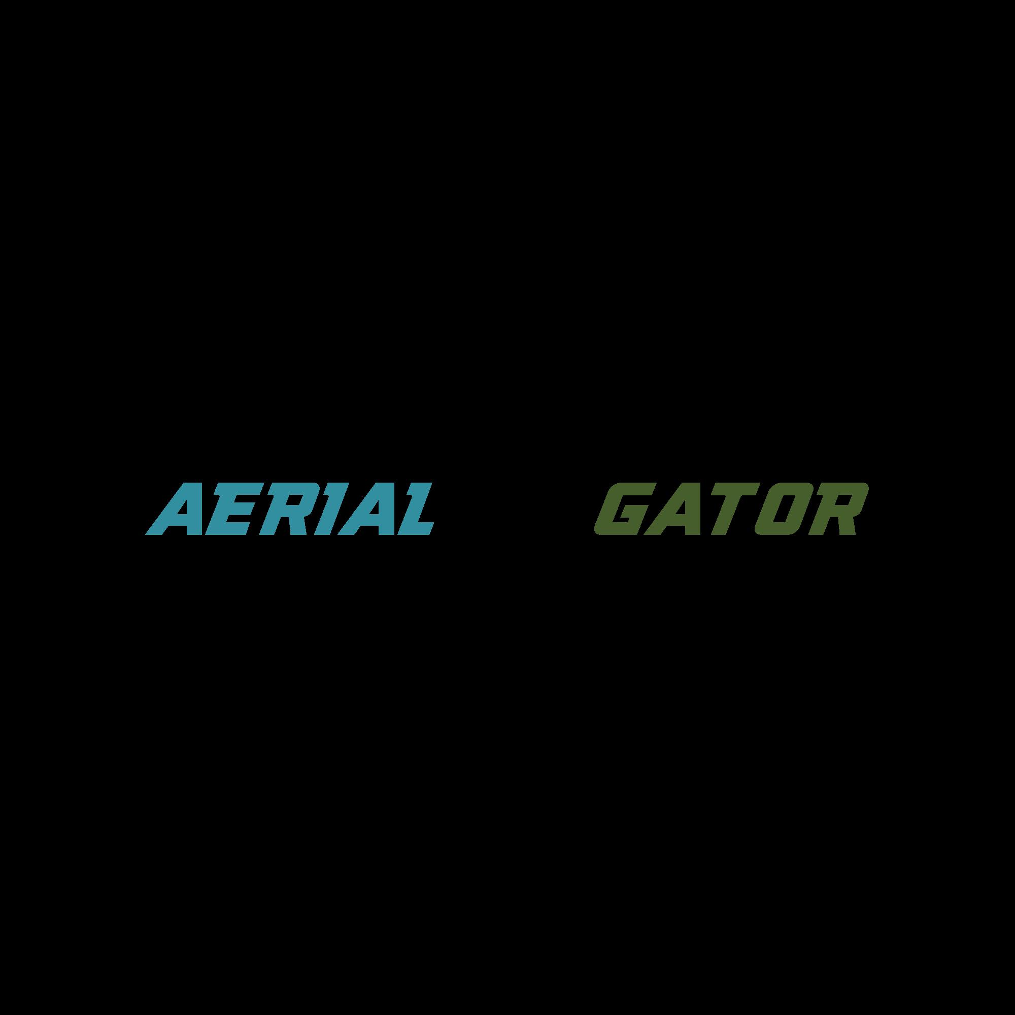 AerialGator Drone Photography needs a minimalist logo design