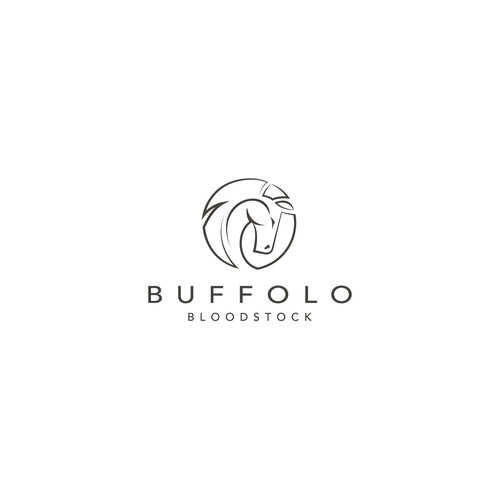 Buffollo Bloodstck - horse breeding
