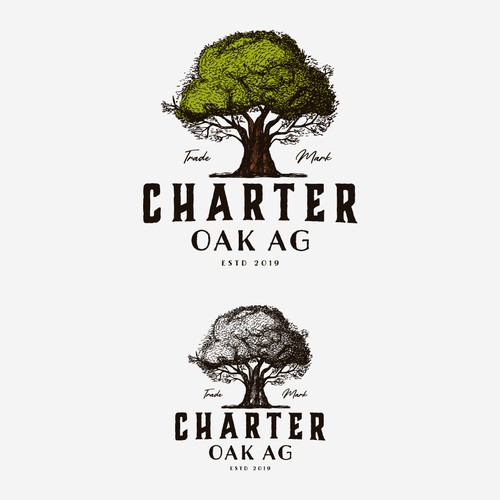 Logo Concept for Charter Oak Ag