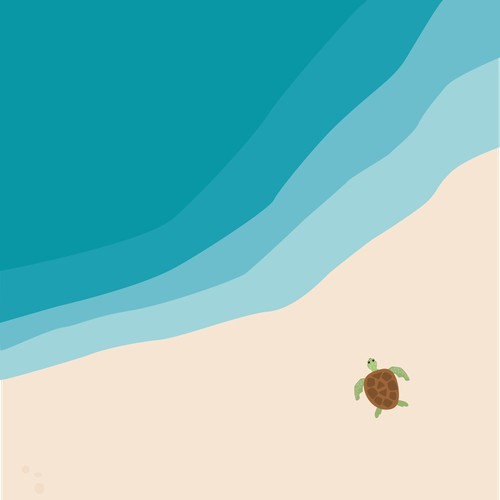 Turtle illustration