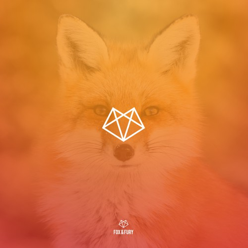 fox & fury