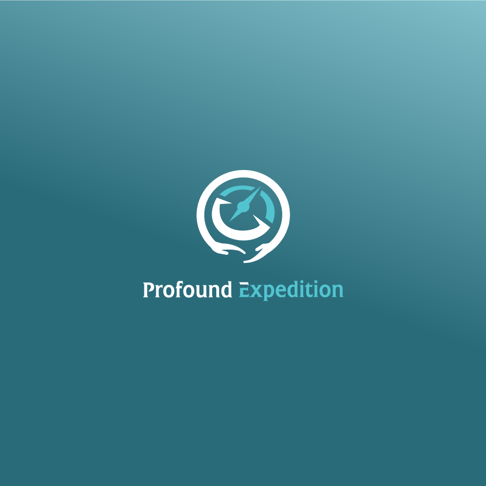 """Design a logo for an adventure travel reality show """"Profound Expedition"""""""
