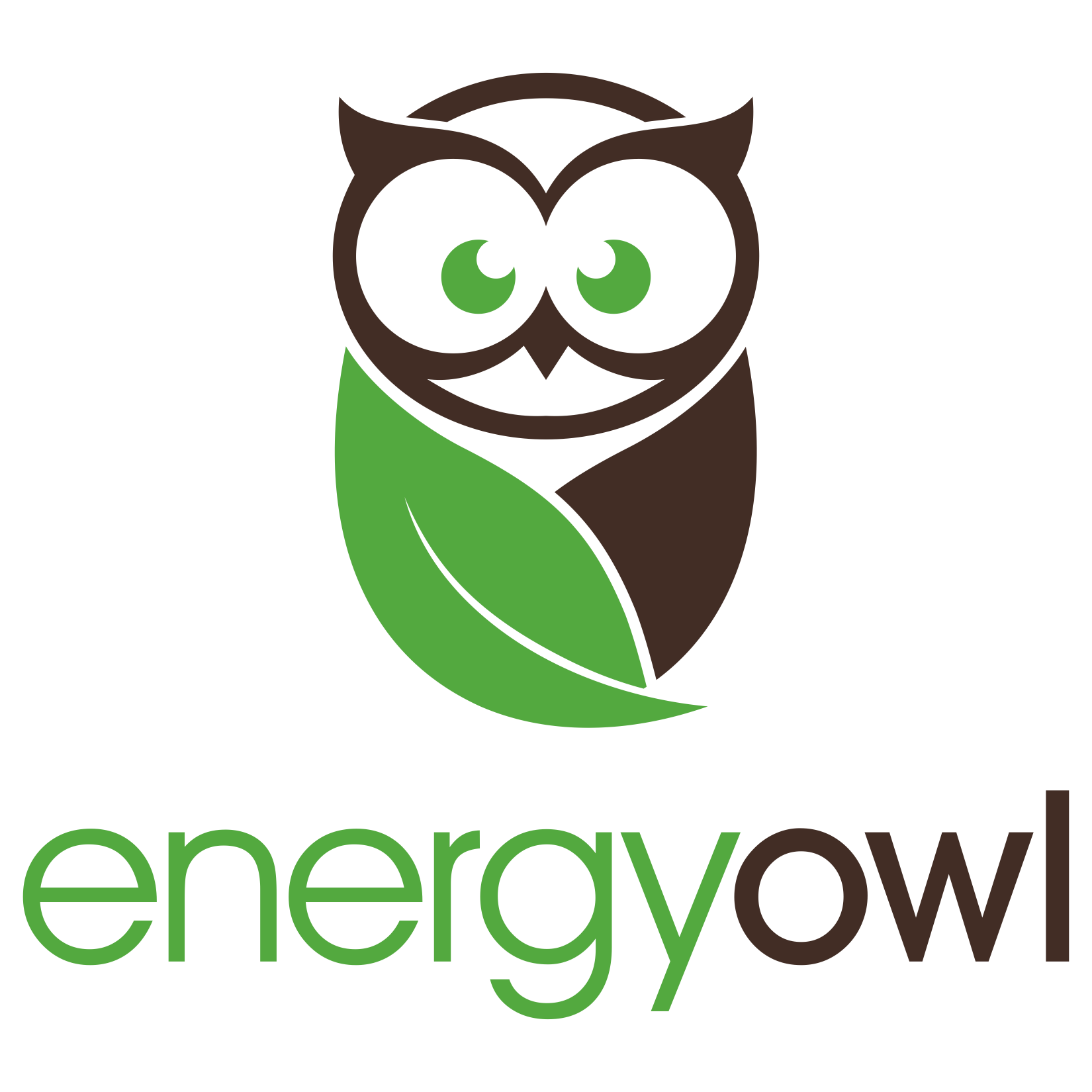 Create a standout 'Owl' logo for new energy consultancy