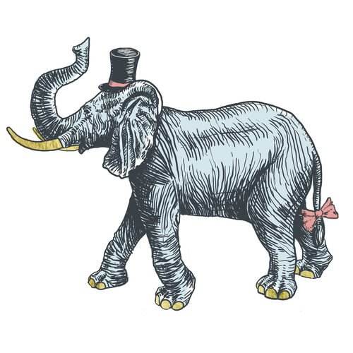 An elephant crossed with Kate Spade class and French bistro shabbychic