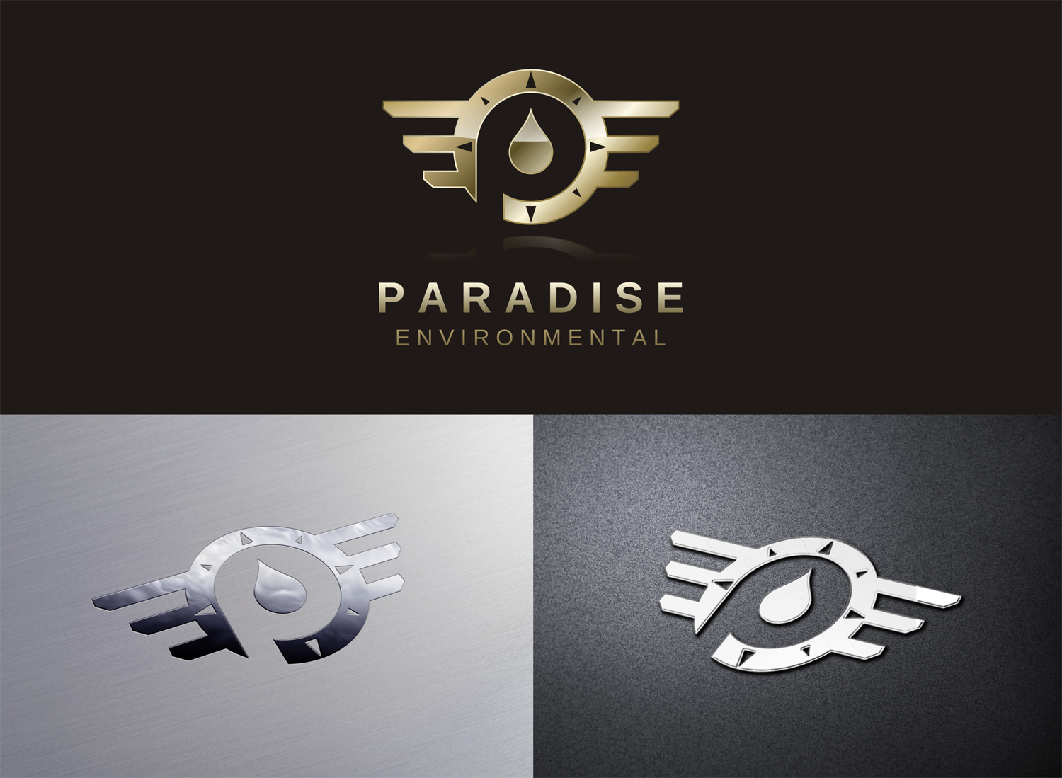 Paradise Environmental Needs your Designs for a NEW Logo