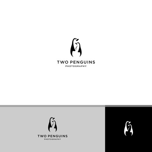 two penguuins photography