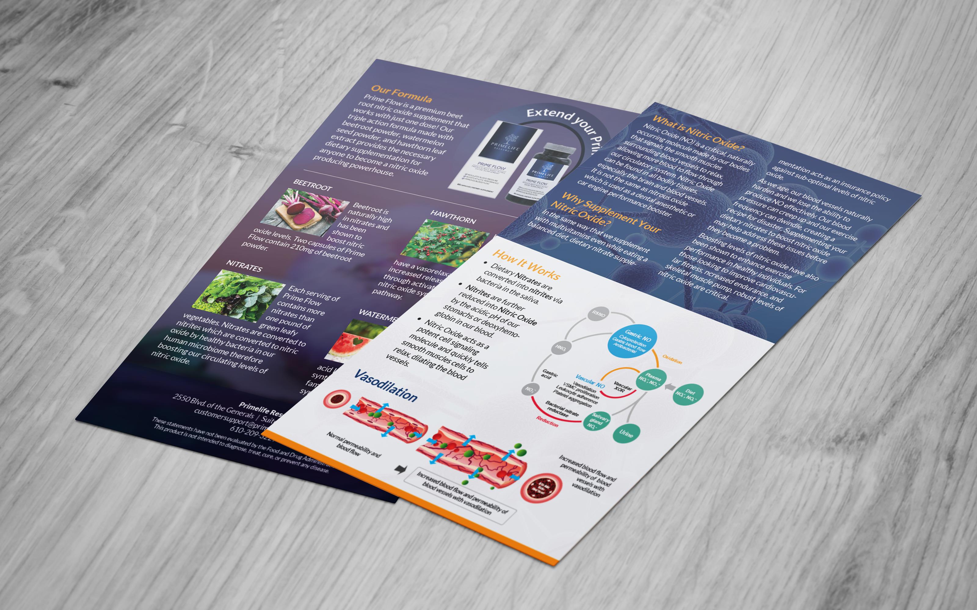 Primelife Marketing Flyer