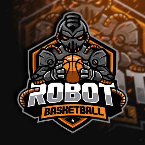 Robot Basketball
