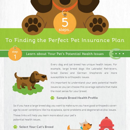 Pet Insurance Infographic