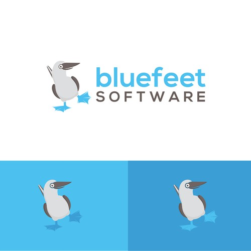 BlueFeet Software
