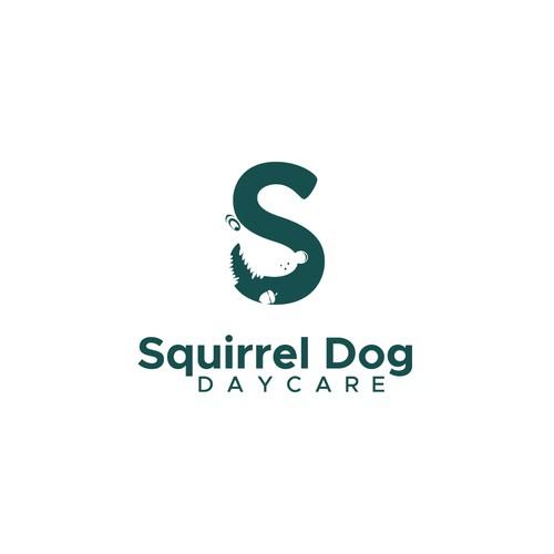 Squirrel Dog Daycare