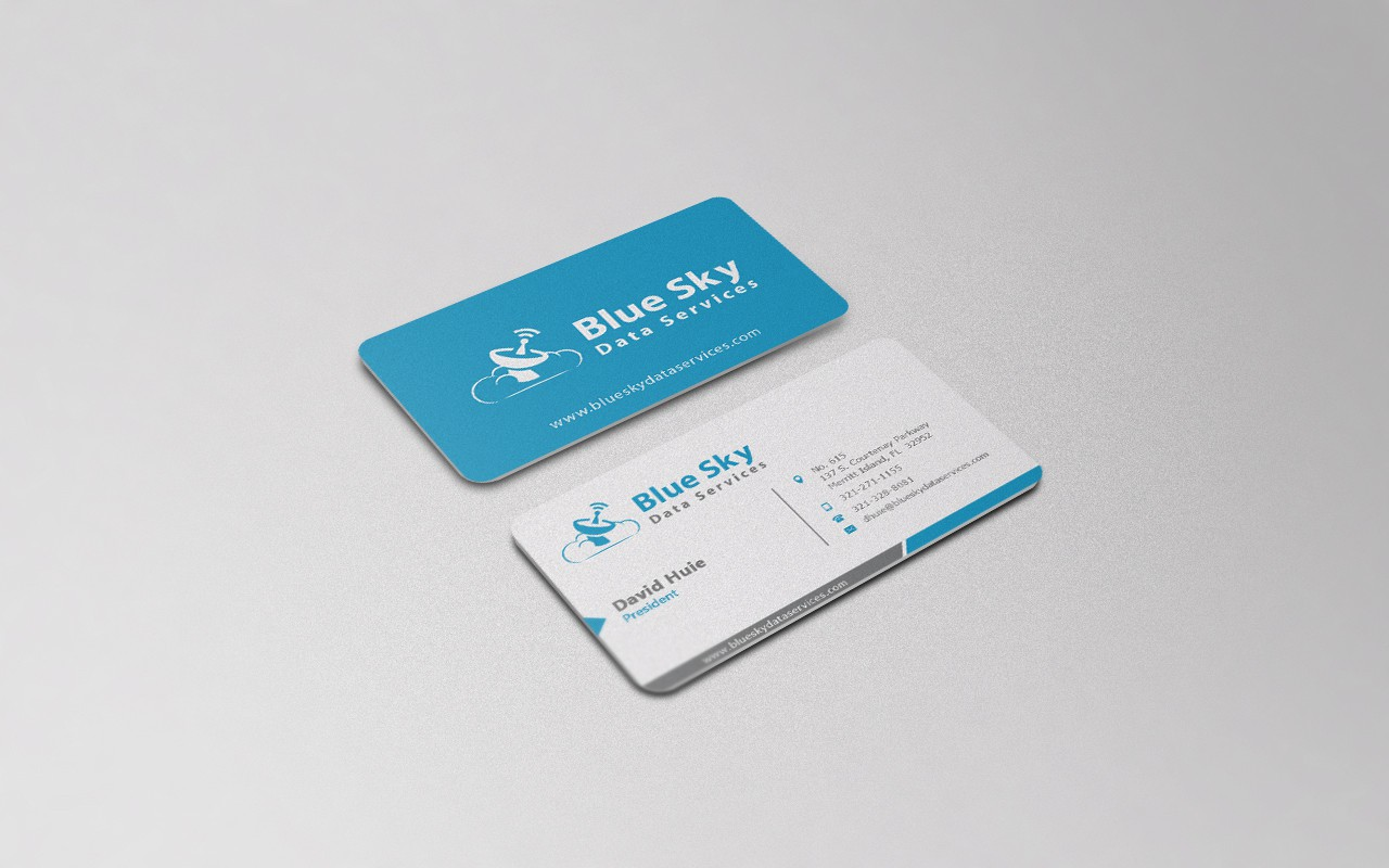 A logo for Blue Sky Data Services, a satellite weather data services company