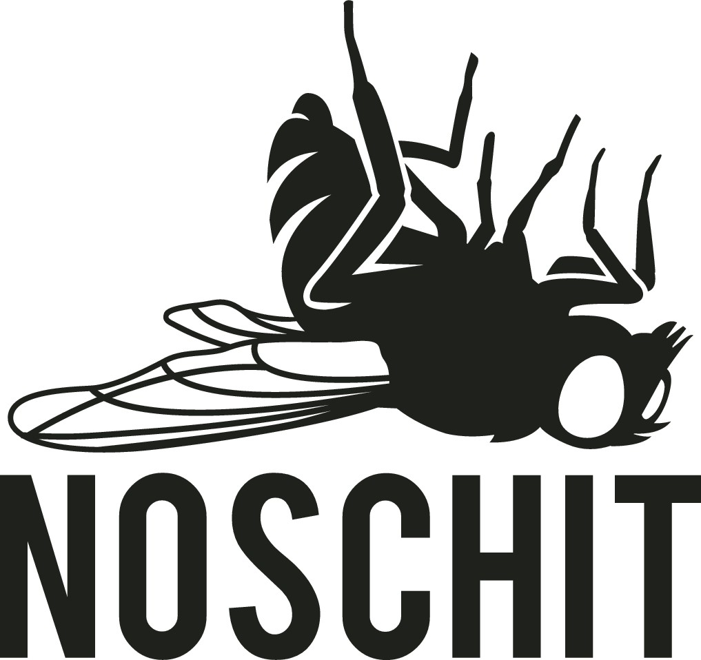 Dead Fly Logo