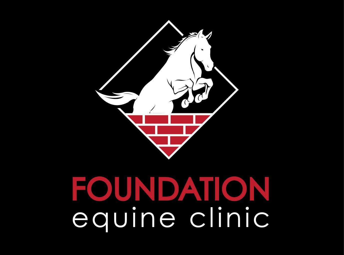 Revise this logo for a horse veterinarian!