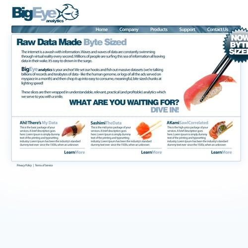 BigEye Analytics Website