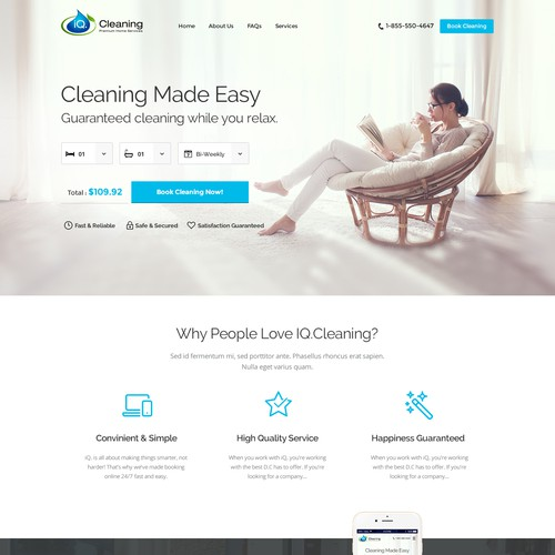 iQ Cleaning Website Design