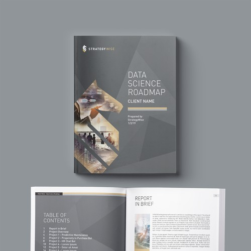 Data Science Roadmap