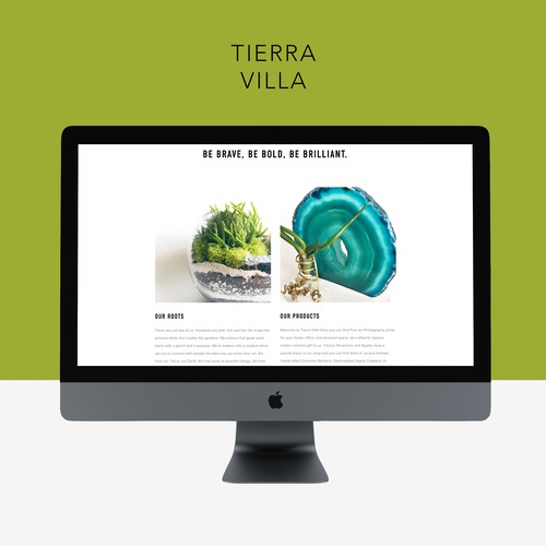 Squarespace Website for Terrarium Shop