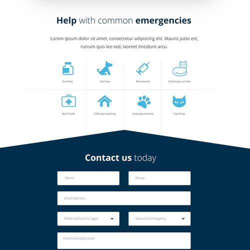 Landing Page for Vet