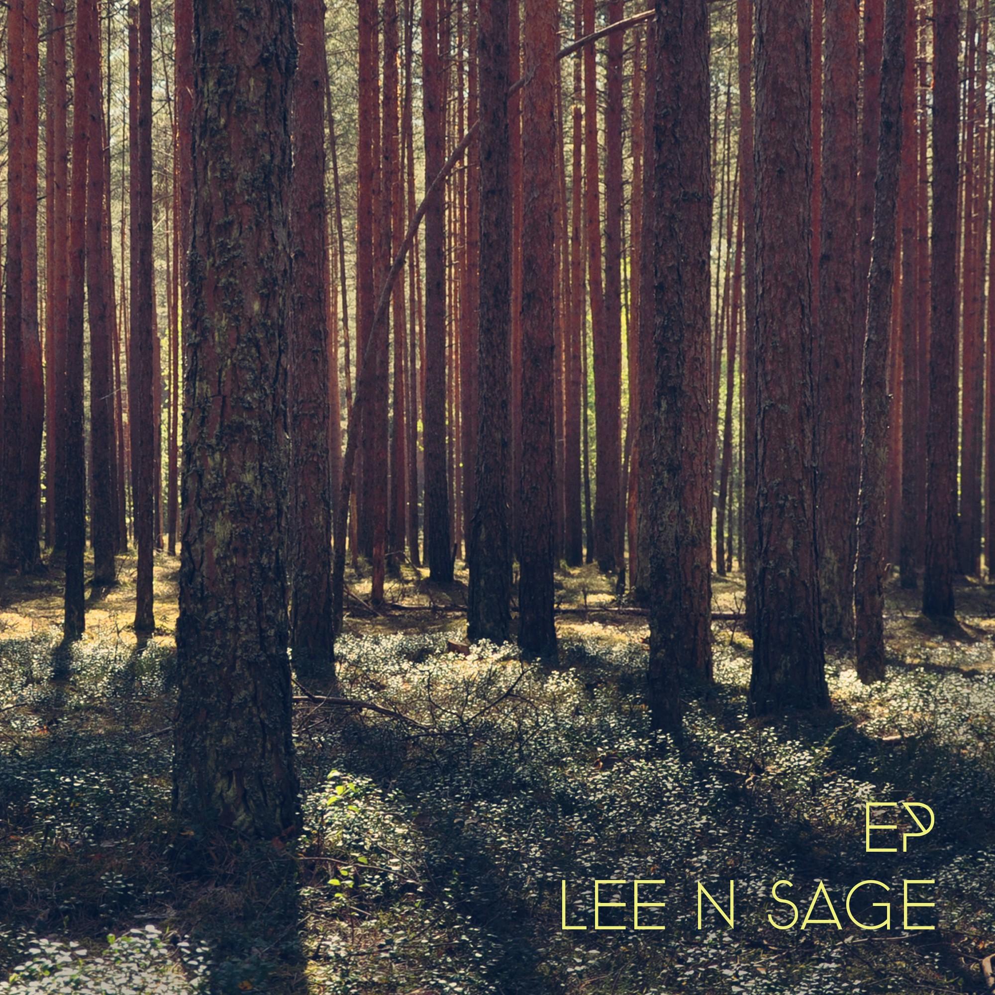 Album art design for a 4 song EP (acoustic solo musician)