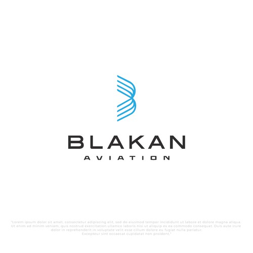 Minimalist Logo Design for Blakan-air transport services