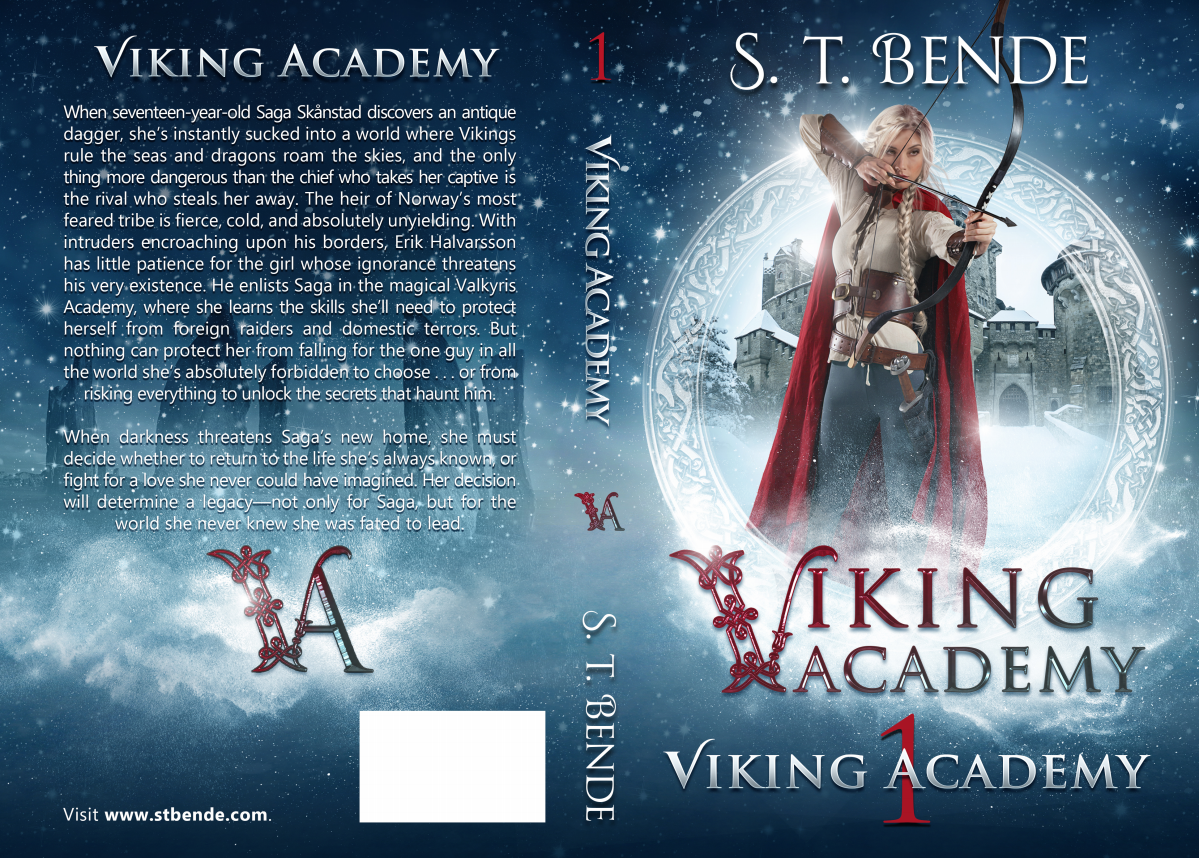 Viking Academy: Viking Academy (Book 1)
