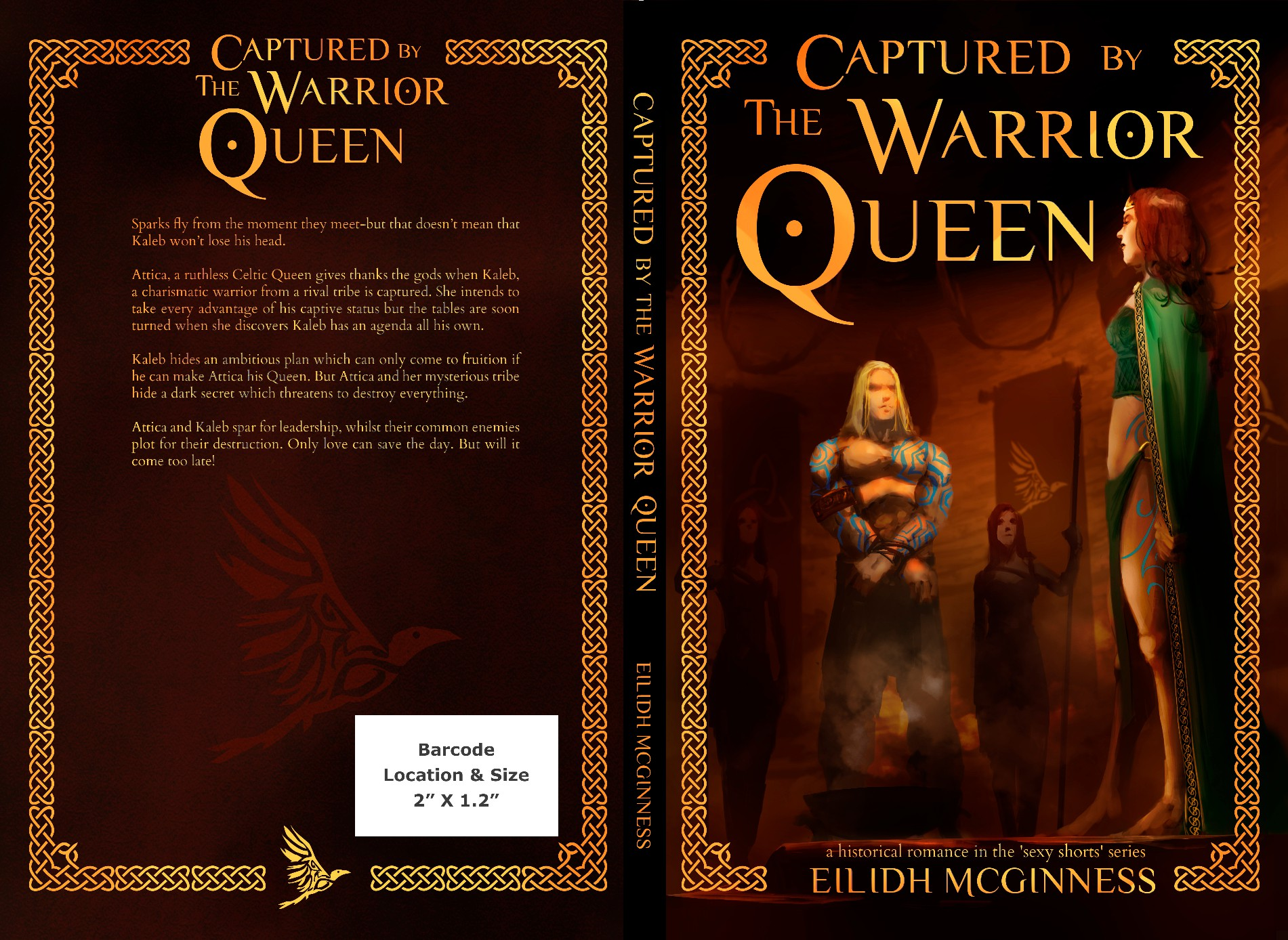 Captured by the Warrior Queen