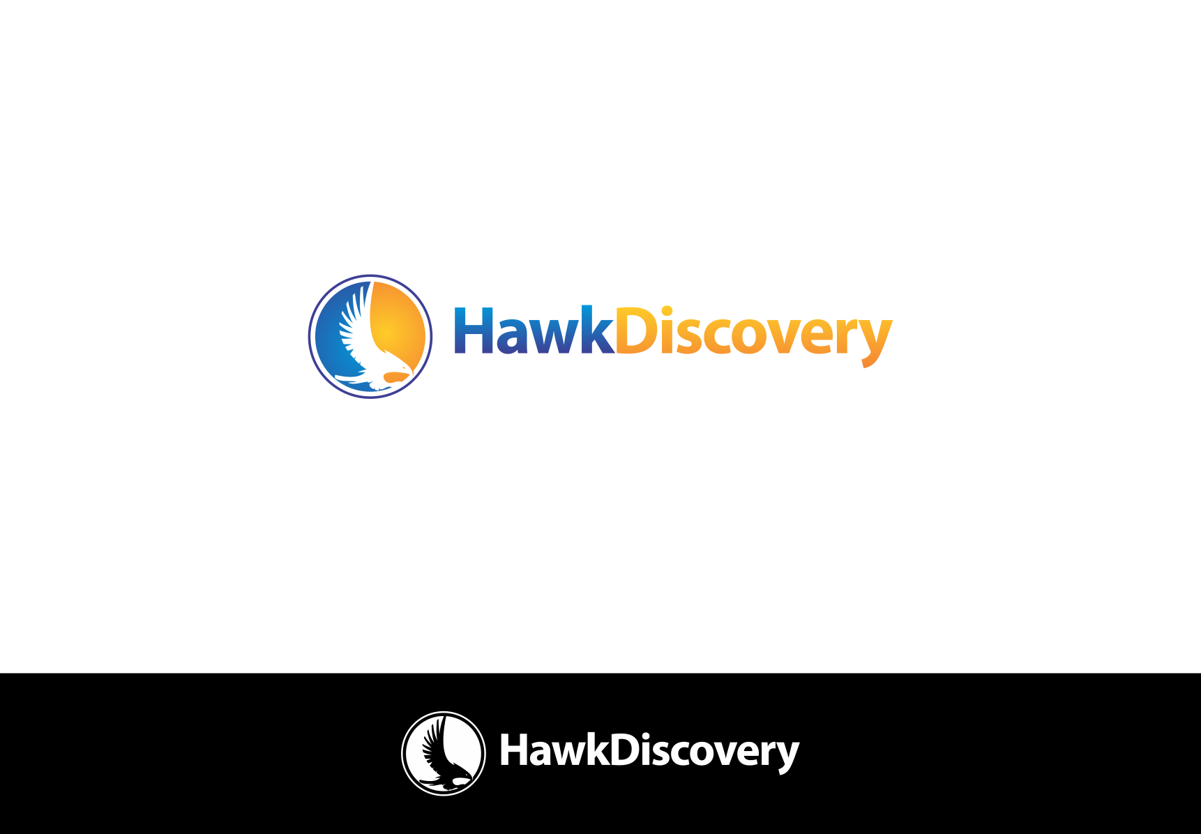 Create the next logo for HawkDiscovery