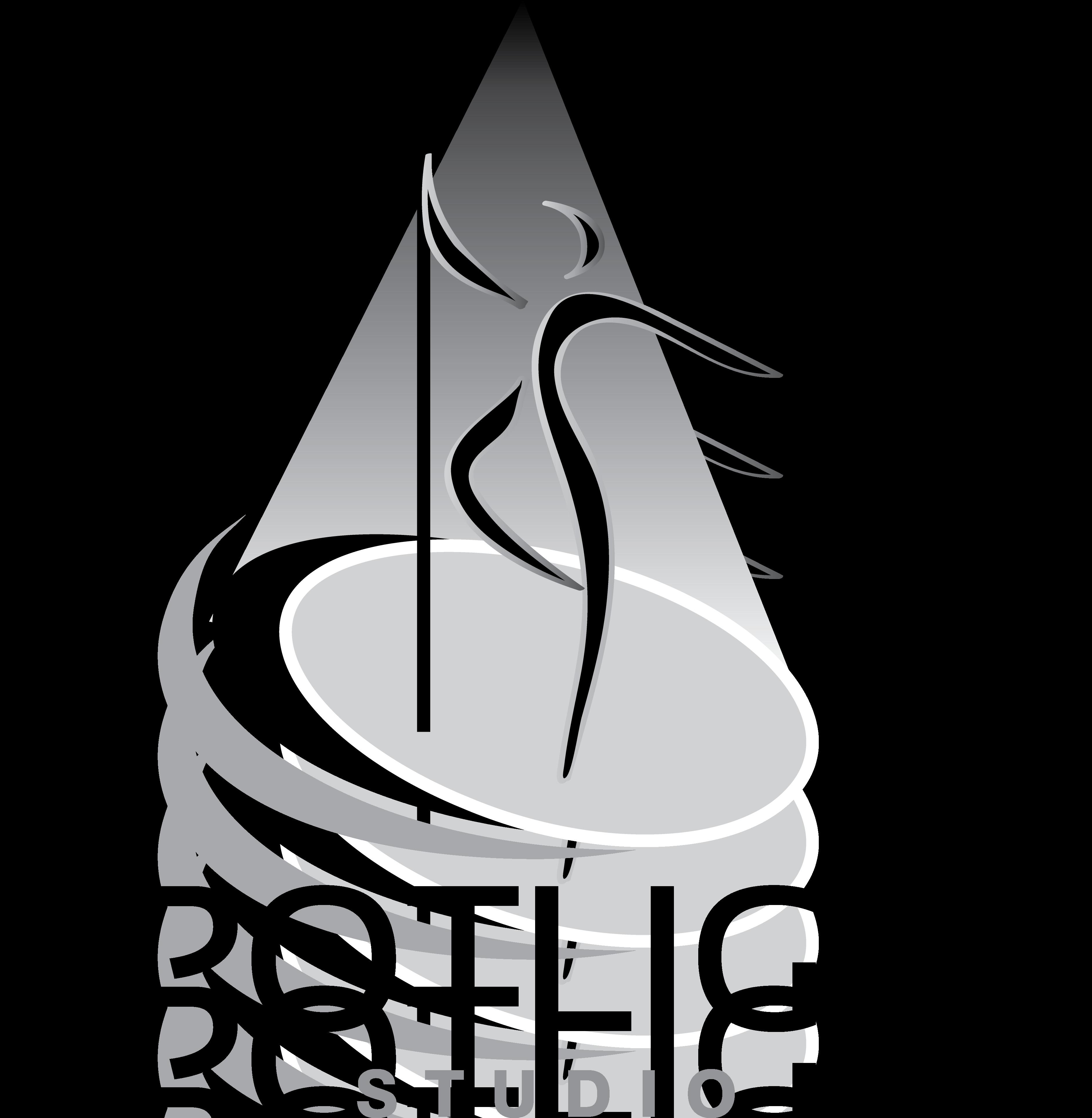 High Class Pole Dance Studio mit Show Ambitionen sucht Logo!!