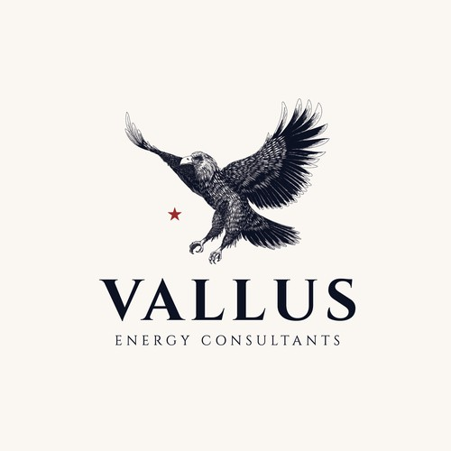 Eagle Illustration for Vallus Energy Consultants