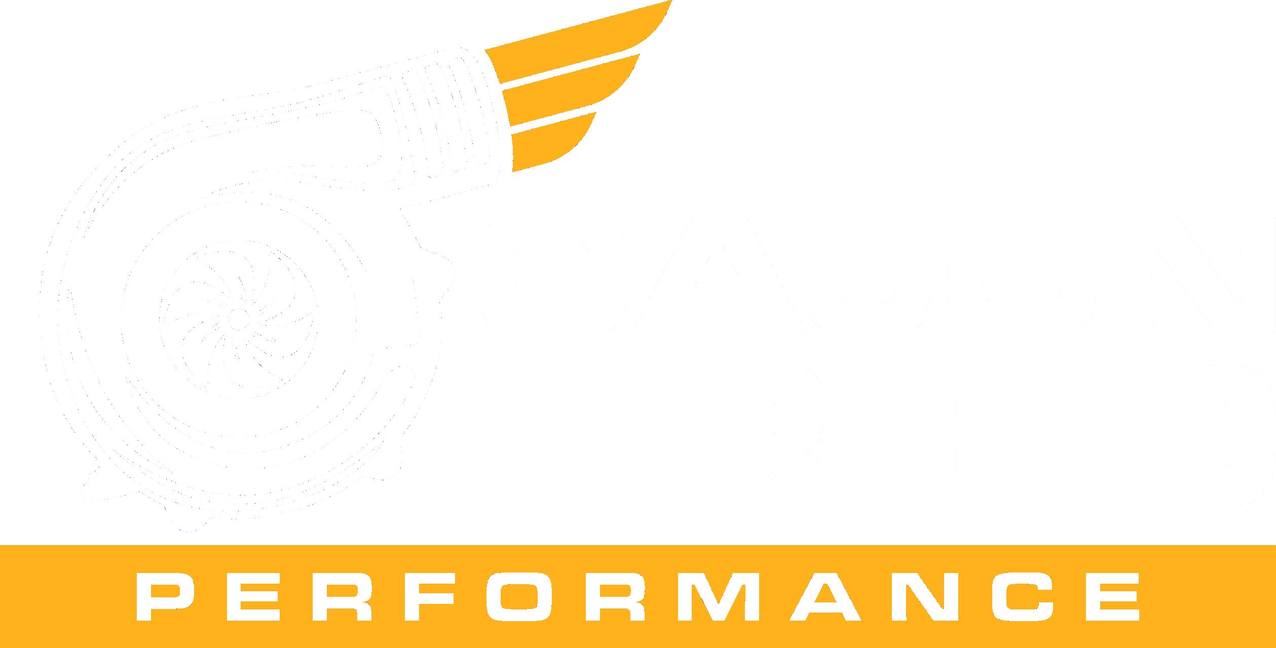 Design a creative logo for Cajun Fried Performance