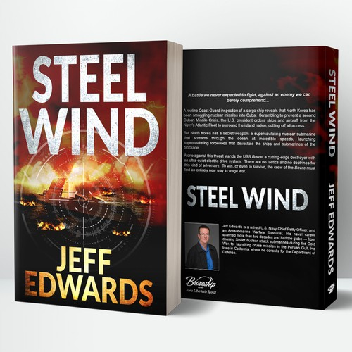 Book Cover for Steel Wind