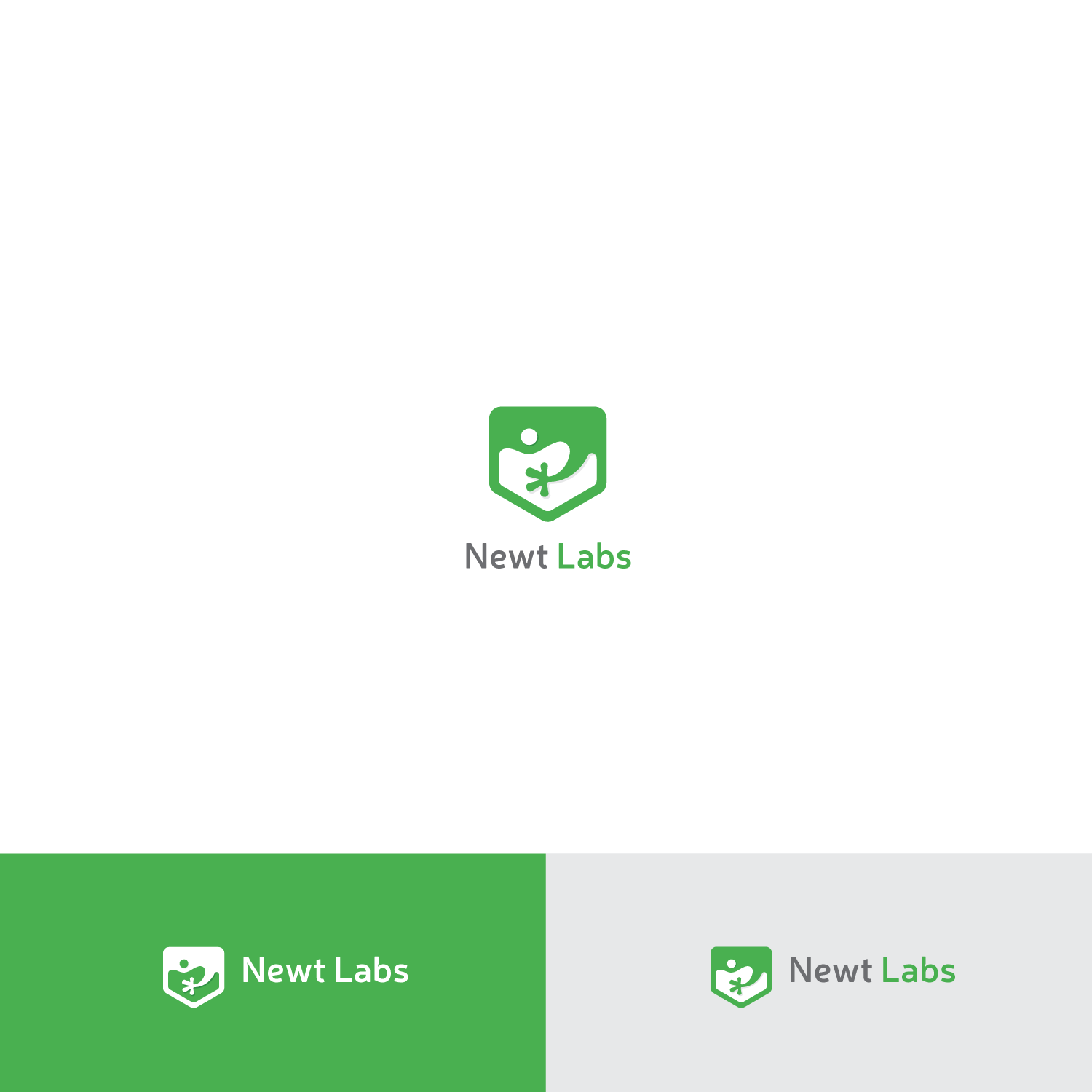 Design A New Logo For Newt Labs WordPress Support & Maintenance Company