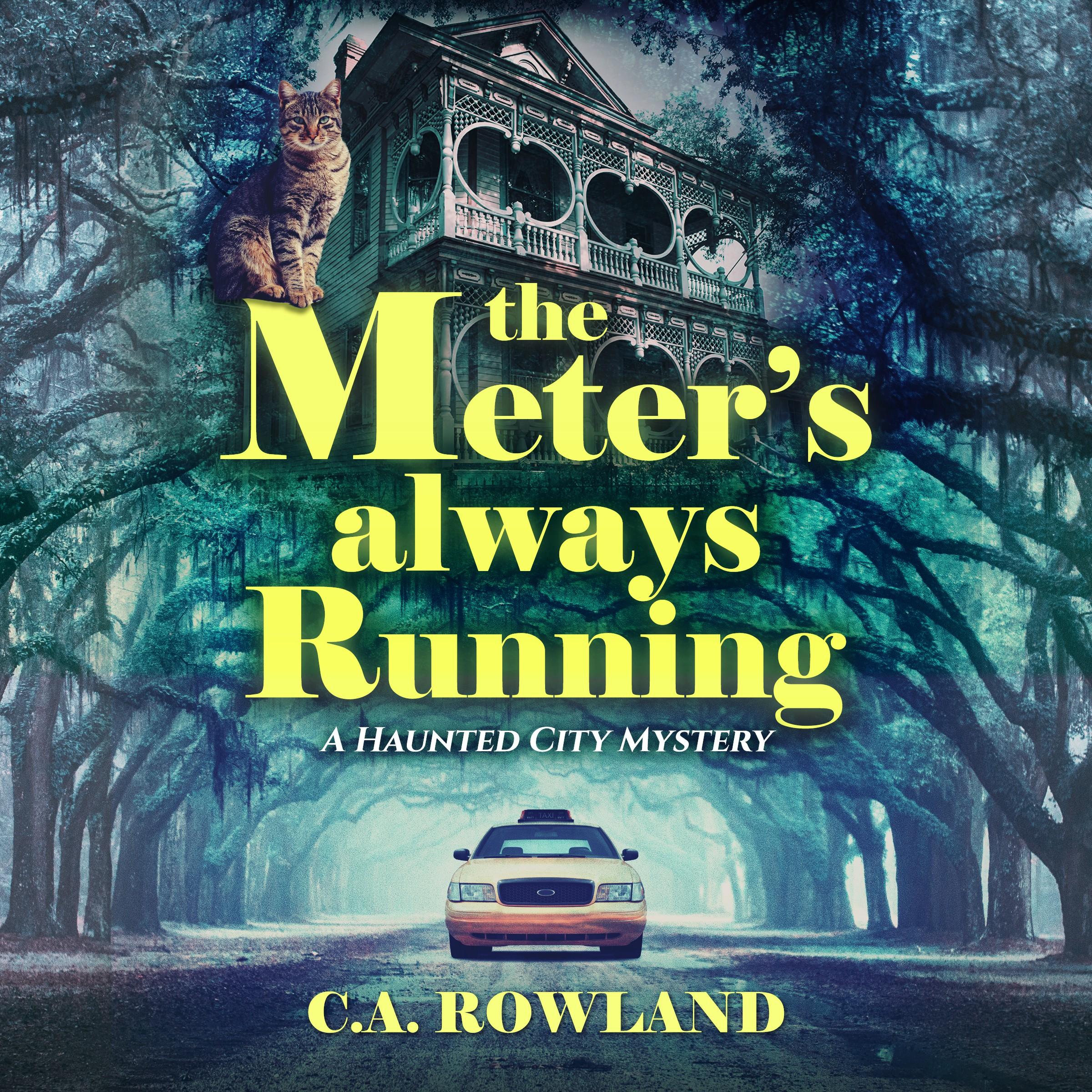 Savannah Mystery Book cover design