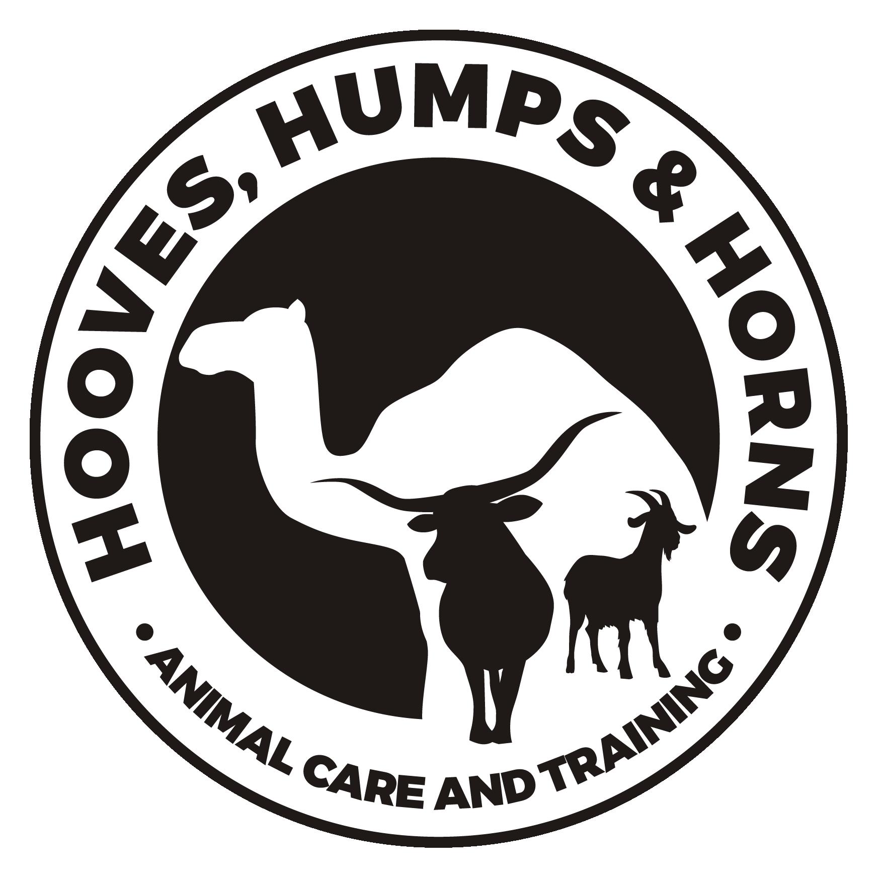 Create a unique logo for a camel trainer!